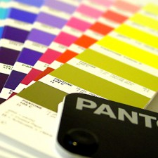 pantone reference cards color chart